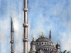 Istanbul - Blue Mosque, 2010
