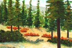 Badger Lake Campground