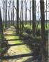 Trail-SBWetlands