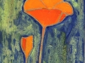 Scappoose (California) Poppies 8