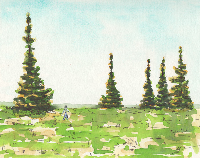 watercolor. Walking among fir Trees in Scappoose.