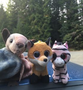 Stuffed animals in forest