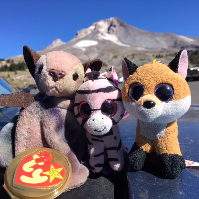 Stuffed animals with Mt Hood in the background.