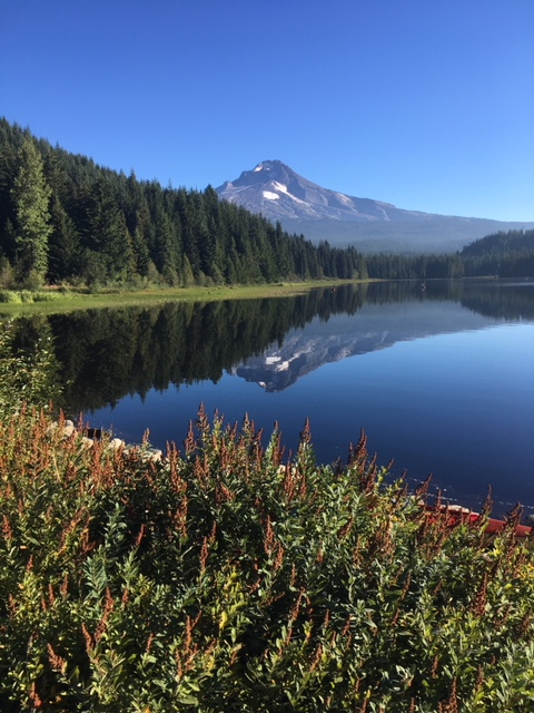 Mt. Hood from Trillium Lake.