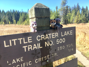 Trailhead sign to Little Crater Lake.