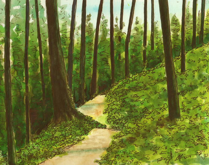 Watercolor of Ridge Trail. A path through trees.
