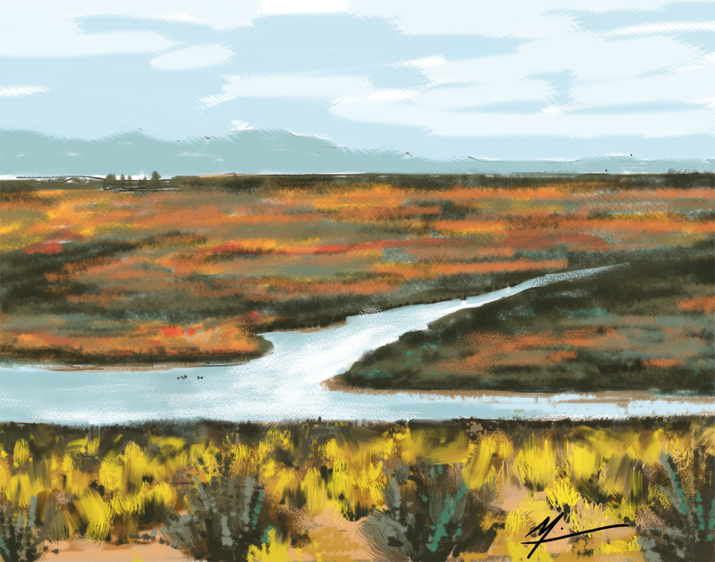 iPad drawing of Alamosa National Wildlife Refuge